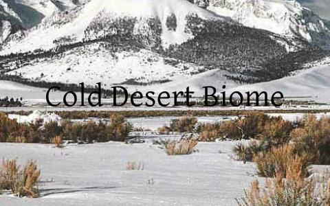 Cold Desert Biome By Deni Reynolds On Prezi