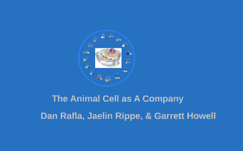 The Animal Cell as A Company by Garrett Howell on Prezi