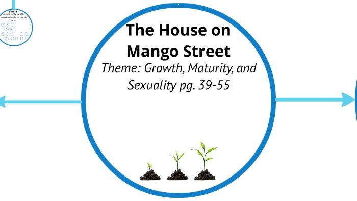 the house on mango street a rice sandwich summary