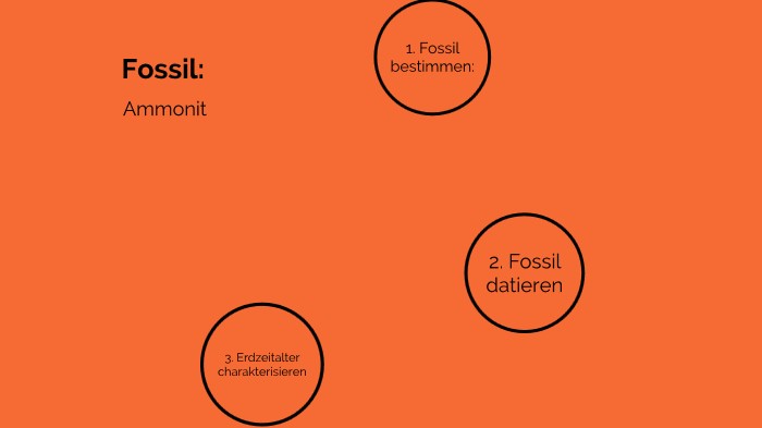 3 Möglichkeiten, Fossilien zu datieren