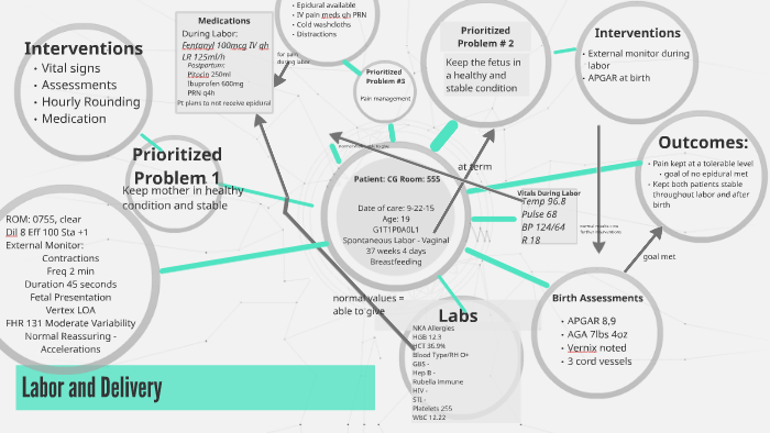 Labor and Delievery by ahlee davis on Prezi