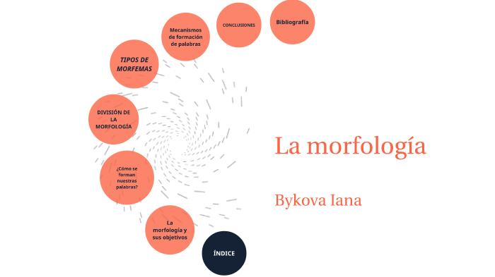Morfologia By Yana Bykova On Prezi Next