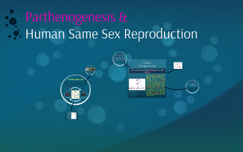 Parthenogenesis: Lesbian Reproduction by Tameka Bazile on Prezi