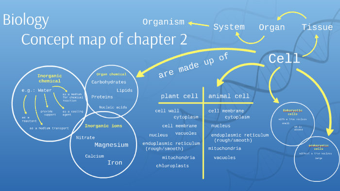 Biology concept map of chapter 2 by long hei ho on Prezi