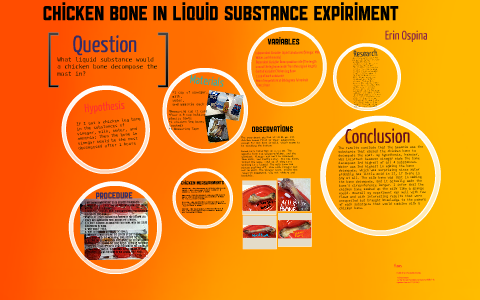 Chicken Bone in Liquid Substance Expiriment by Erin O on Prezi