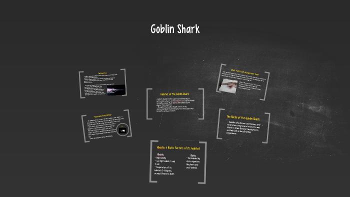 Goblin Shark By Cassie Moulthrop On Prezi