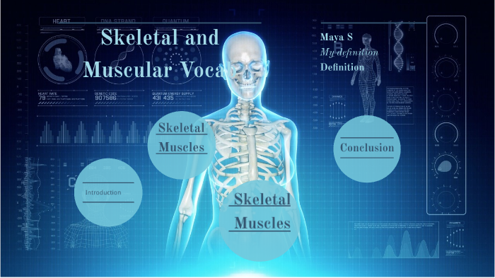 Skeletal and Muscular Vocab by Maya Steht on Prezi Next