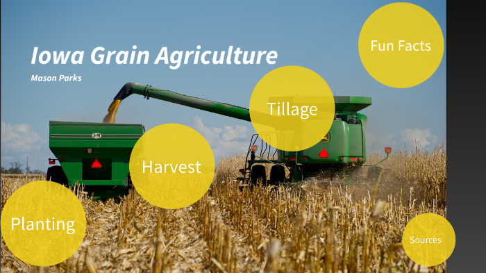 Iowa Grain Agriculture by Mason Parks on Prezi Next