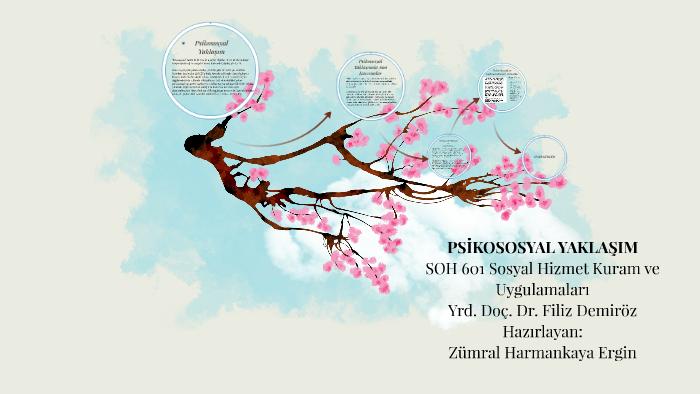 Psikososyal Yaklaşim By Zumral Harmankaya On Prezi