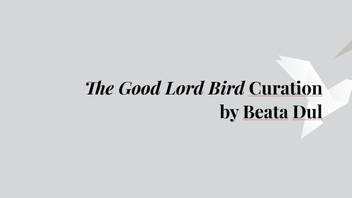 The Good Lord Bird By Beata Dul On Prezi