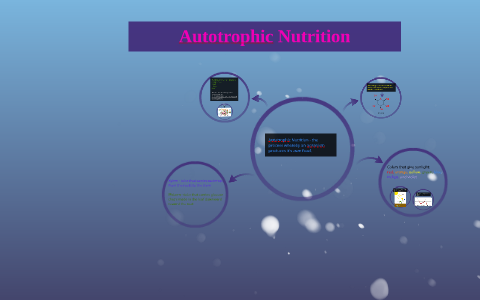 Autotrophic Nutrition By Temima Gros