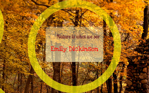 nature is what we see by emily dickinson