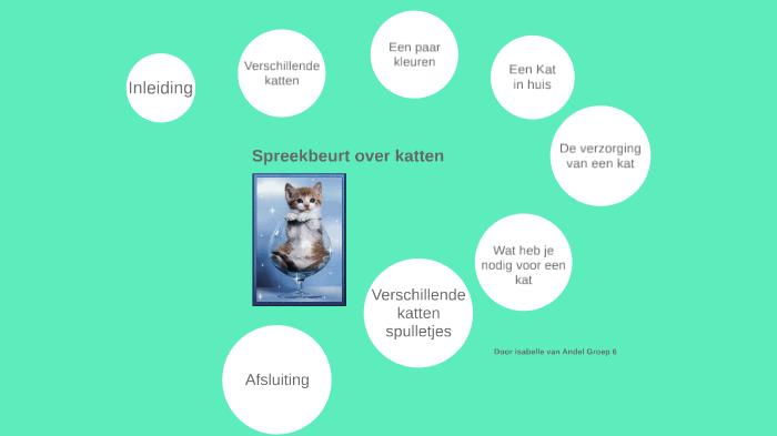 spreekbeurt over katten!!!william van andel on prezi next