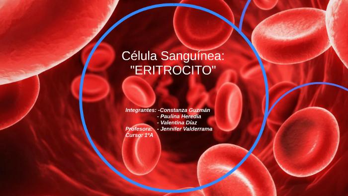 Celula Sanguinea