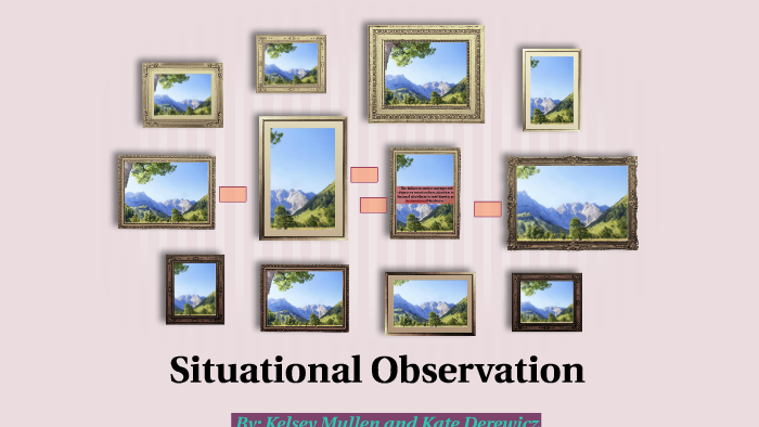 situational observation