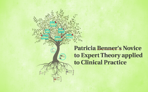 patricia benner novice to expert examples