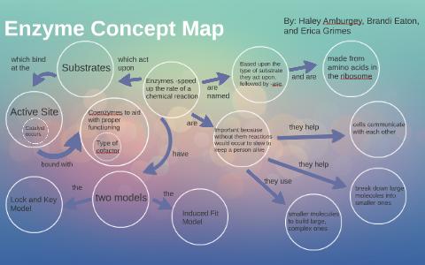 Enzyme Concept Map by Haley Amburgey on Prezi