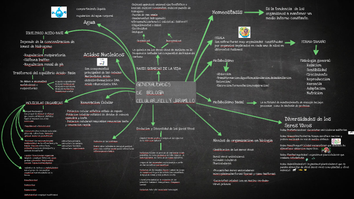 Copia De Mind Mapping Template By Kelly Jaramillo Peña On Prezi