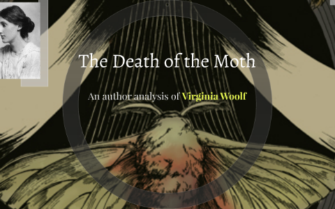 The Death of the Moth by Caity Powell