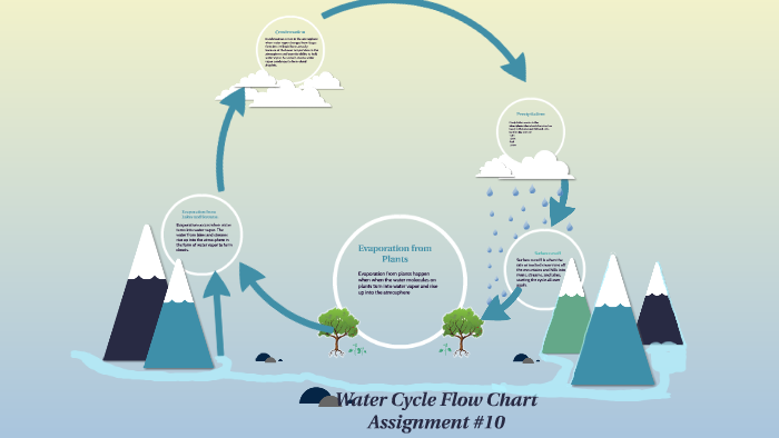 Water Cycle Flow Chart By J Stiles
