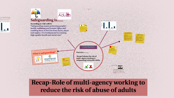 multi agency working adults