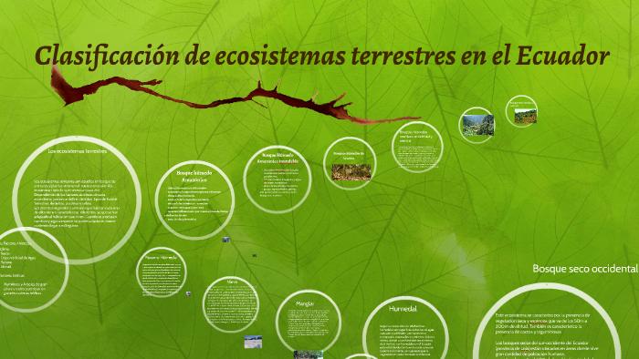 Clasificación De Ecosistemas Terrestres En El Ecuador By Mariet De La Ese