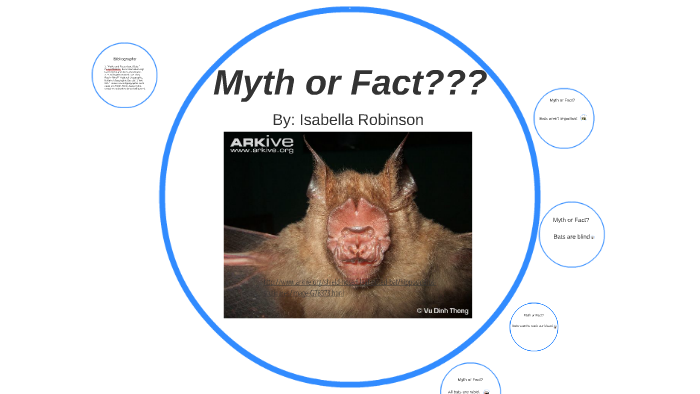 Bat Fact Or Myth By Isabella Robinson On Prezi