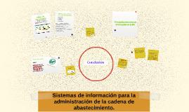 Sistemas de información para la administración de la cadena