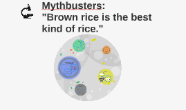 Mythbusters: What type of rice is best?