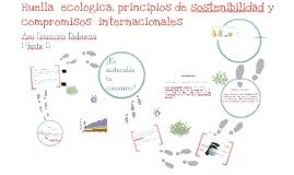 Copy of huella ecologica