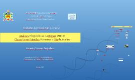 Análises Filogenéticas da Região MHC-G – Classe Ib em