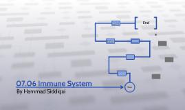 07.06 Immune System