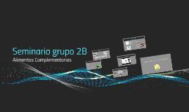 Seminario grupo 2B