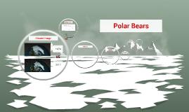 Polar Bears IUCN Panel