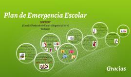 Plan de Emergencias Escolares Madre Siffredi (COPASST)
