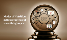 Modes of Nutrition: