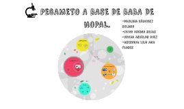 Copy of Copy of PEGAMETO A BASE DE BABA DE NOPAL.