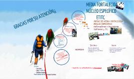 MEDIA FORTALECIDA 2016