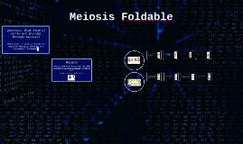 Copy of Meiosis