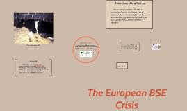 The European BSE Crisis