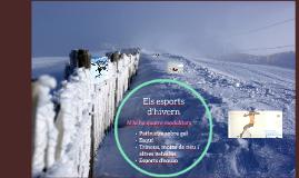 Modalitats d'esports d'hivern