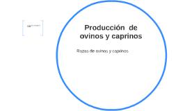 Production de ovinos y caprinos