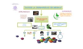 Copy of SOBRE LA INSEGURIDAD EN MEXICO