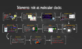 Telomeres: role as molecular clocks