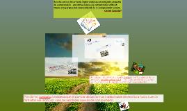 Copy of Reseña crítica del artículo Explorando las necesidades actua