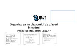 Organizarea Incubatorului de afaceri