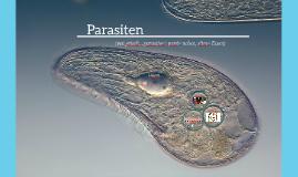 Protozoen