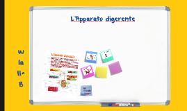 Apparato_digerente