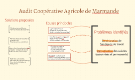 Audit Coopérative Agricole de Marmande