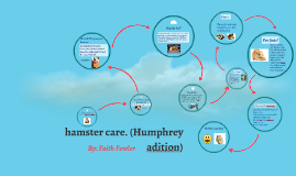 How to take care of a hamster. (humphry adition)